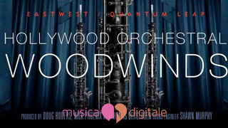 Gli Hollywood Woodwinds