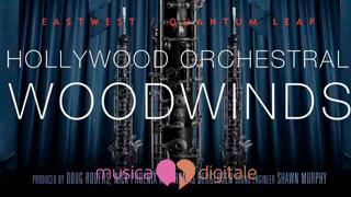 Gli Hollywood Woodwinds